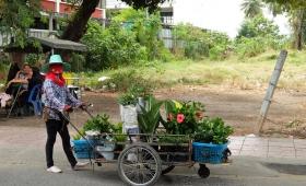 7 января 2015. Тайланд, Канчанабури
