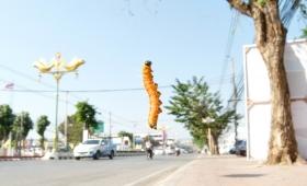15 января 2015. Тайланд, Канчанабури