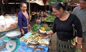 11 февраля 2015. Лаос, Ванг Виенг