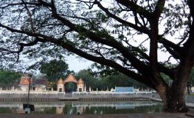 2 марта 2015. Тайланд, Сурин