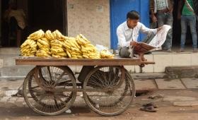 30 ноября 2015. Индия, Дели.
