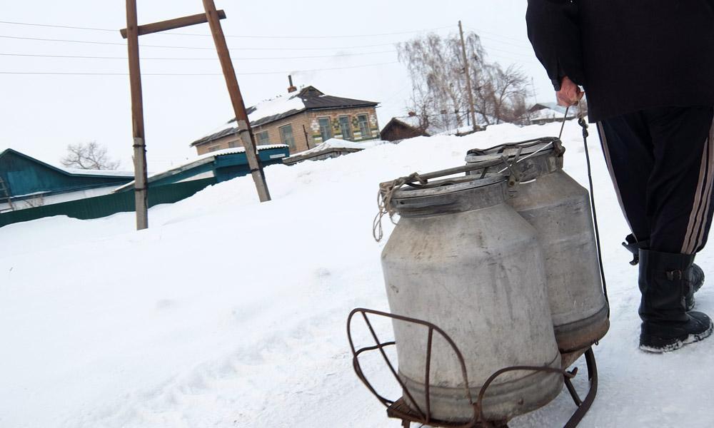 1 февраля 2016. Казахстан, Караганда.