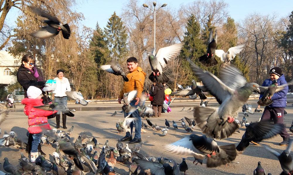 23 февраля 2016. Казахстан, Алма-Ата.