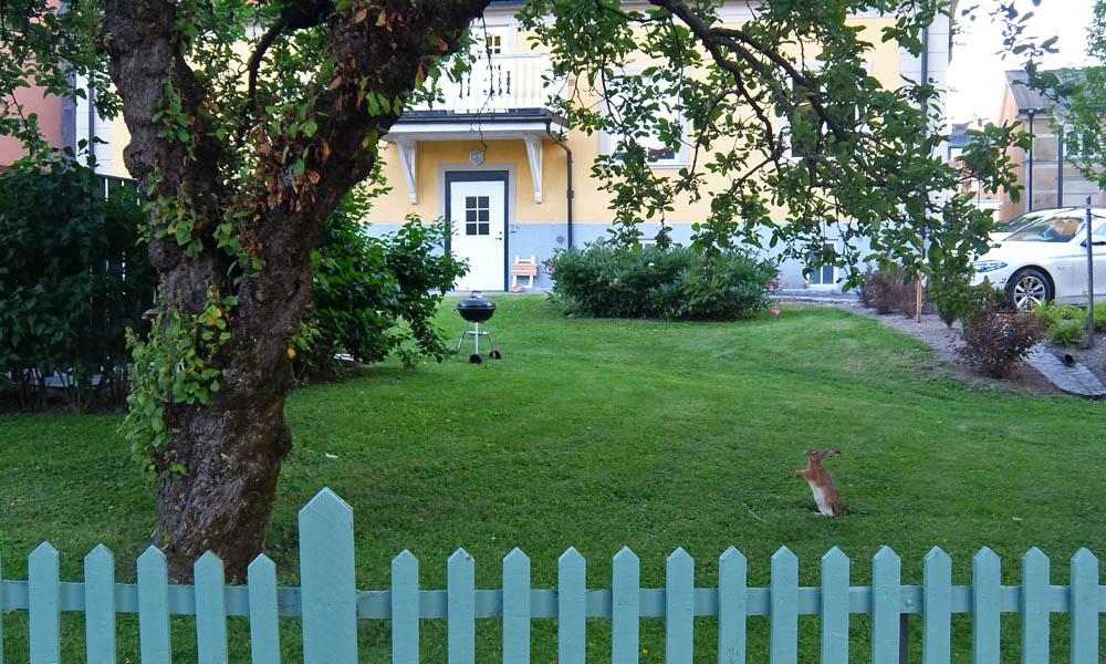 6 июля 2016. Швеция, Вестерос.