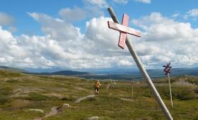 30 июля 2016. Швеция, Ругенский заповедник.
