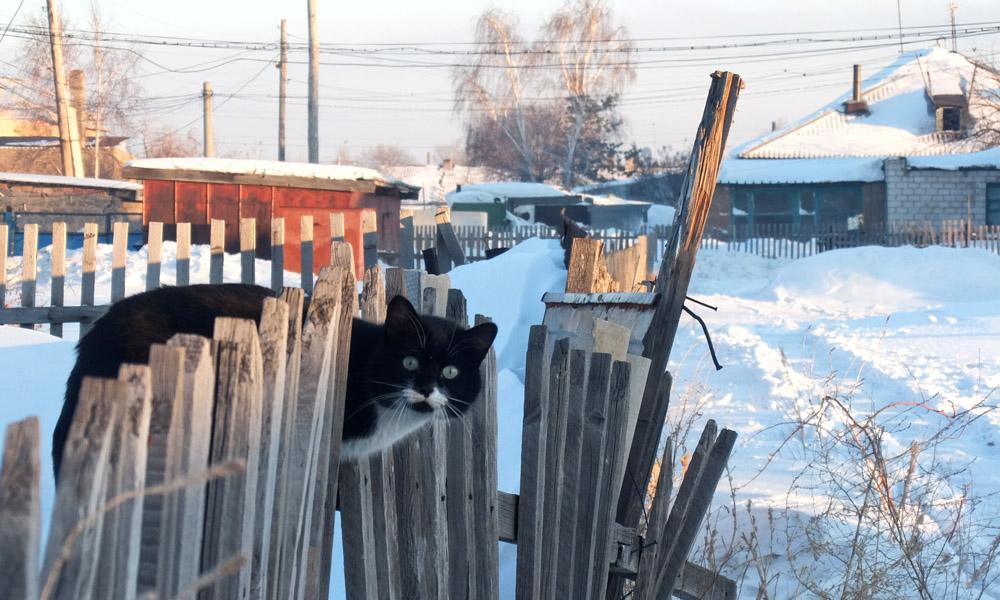 13 февраля 2017. Казахстан, Караганда.
