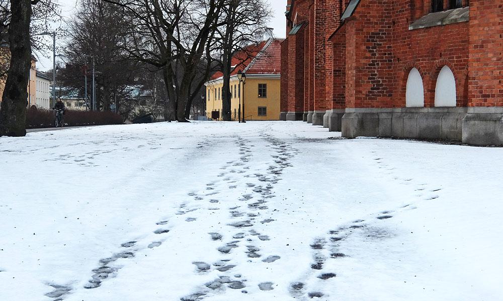 9 марта 2017. Швеция, Вестерос.