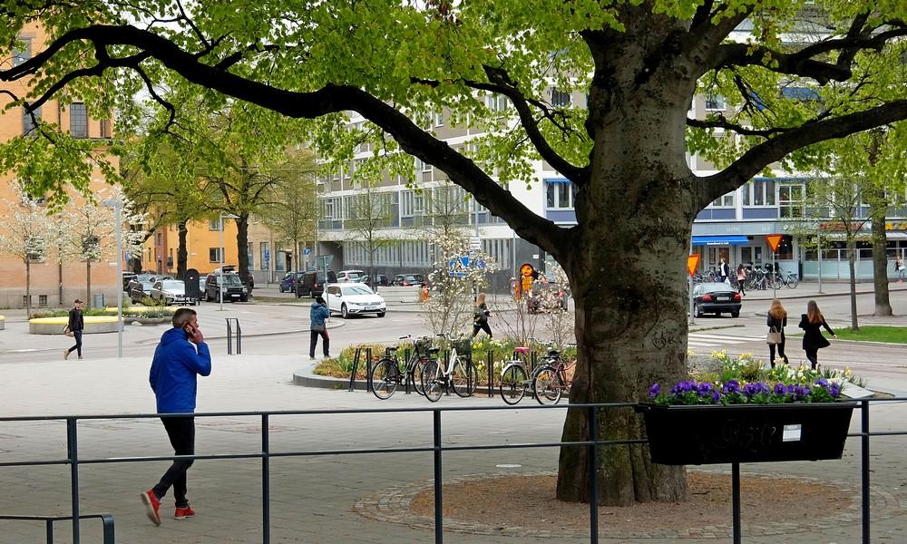 15 мая 2017. Швеция, Вестерос.