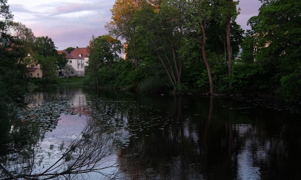 1 июня 2017. Швеция, Вестерос.