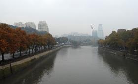 8 ноября 2017. Грузия, Тбилиси.