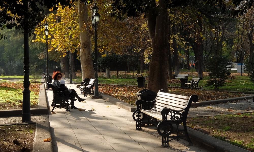 17 ноября 2017. Грузия, Тбилиси.