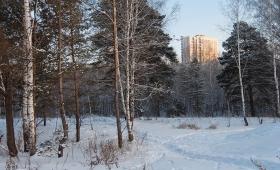 15 декабря 2017. Россия, Кольцово.
