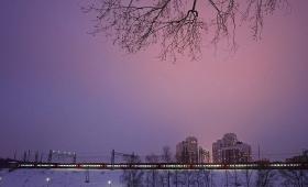 17 февраля 2018. Россия, Химки.
