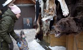 18 февраля 2018. Россия, Москва.